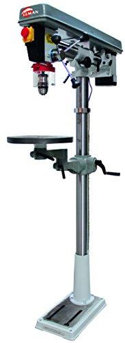 Leman PRC016 - Taladro radial de columna, 16 mm y 550 W