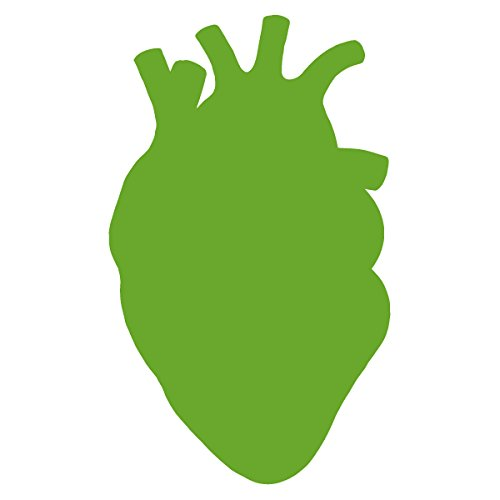 Anatomical Heart Silhouette Cardiologist Logo - Vinyl Decal for Outdoor Use on Cars, ATV, Boats, Windows and More - Lime Green 11 inch