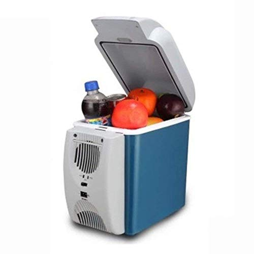 GUOCAO Refrigerador portátil de 6L para coche, mini nevera-congelador al aire libre