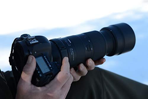 タムロン『100-400mmF/4.5-6.3DiVCUSDキヤノン用』