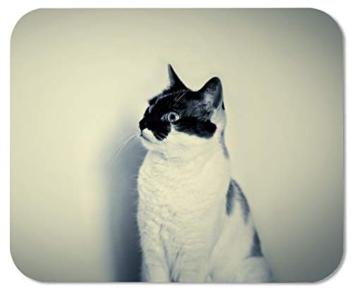 Alfombrilla de ratón linda del gato blanco negro Alfombrilla de ratón de goma natural Pulseras creativas de muñeca protegidas de calidad Alfombrilla de ratón de escritorio personalizada