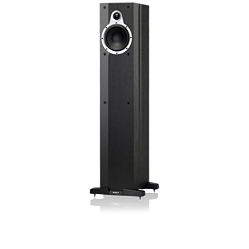 Tannoy  - Altavoz de Suelo Eclipse Two