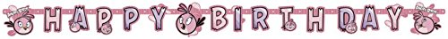 amscan 1,5m x 14cm Angry Birds Happy Birthday Banner, Pink