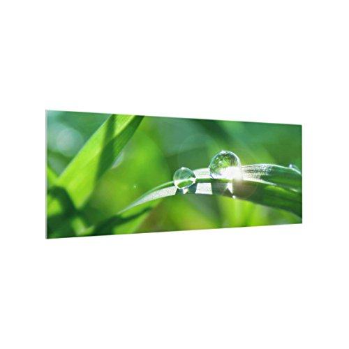 Bilderwelten Glas Spritzschutz-Scheibe Herd 50 x 125 cm - Ambiance II Panorama Quer