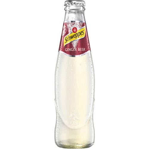 12 Flaschen Orginal Schweppes Ginger Beer Erfrischungsgetränk mit Ingwer a 0,2L in der Glas Flasche inc. 1.80€ MEHRWEG Pfand