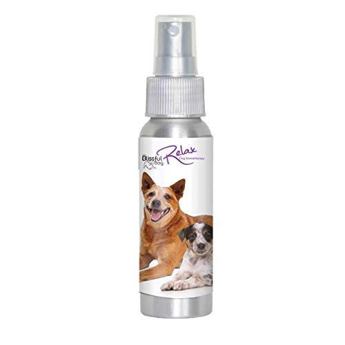 The Blissful Dog Blue Heeler Relax Dog Aromatherapy Spray for Your Dog's Anxiety