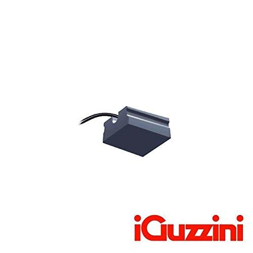 IGuzzini voor onkruidverdelger x26