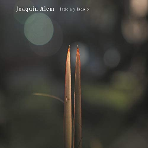 Joaquin Alem
