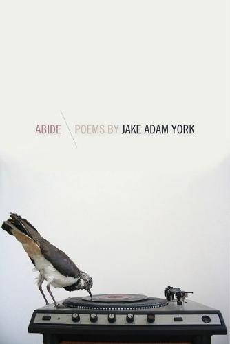 Abide (Crab Orchard Series in Poetry)