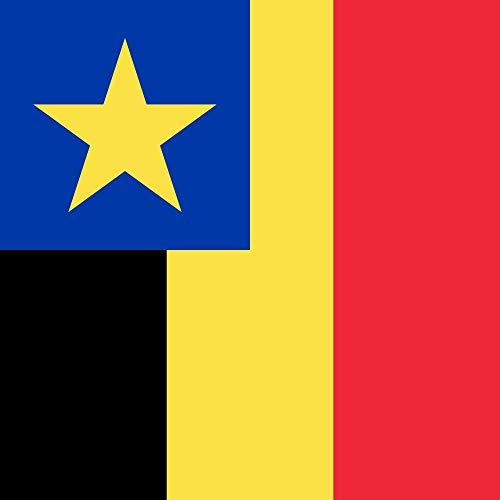 magFlags Drapeau Large Gouverneur général du Congo Belge | 1.35m² | 120x120cm