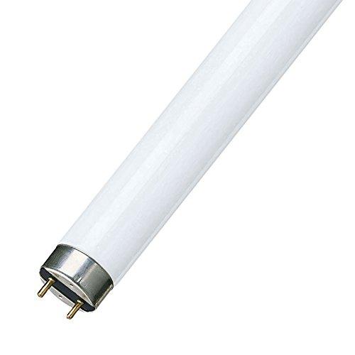 Philips 63177040 Lámpara, 18W, T8, G13, A, 59V, 0.36A