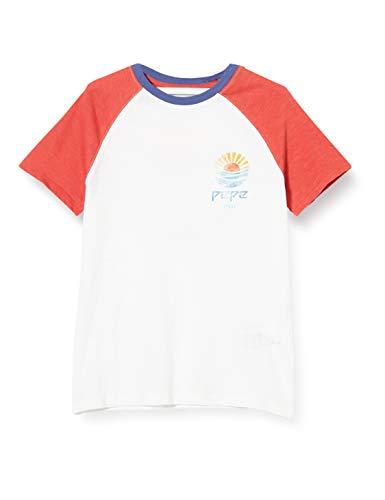 Pepe Jeans Birger Camiseta, Blanco (Optic White 802), 16-17 años (Talla del Fabricante: 16) para Niños