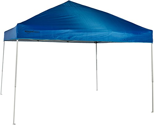 AmazonBasics Pop-up Canopy Tent Review 2020
