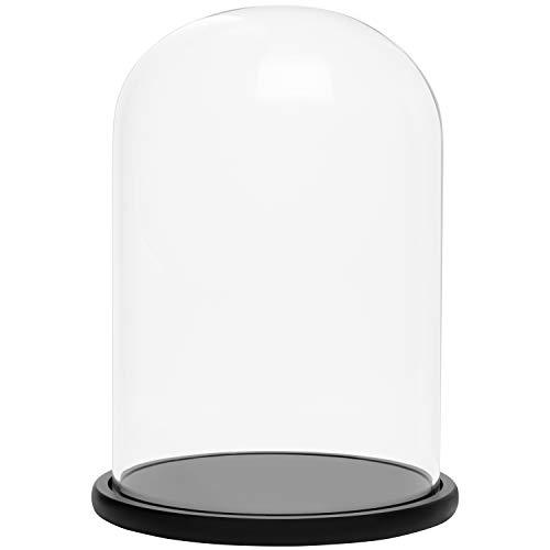 BELLE VOUS Cúpula Cristal Jarra Domo Campana con Base de Madera Negra 30 cm - Campana Cristal Decorativa Transparente Centro de Mesa con Base para Luces de Hada - Urna de Cristal Antigüedades