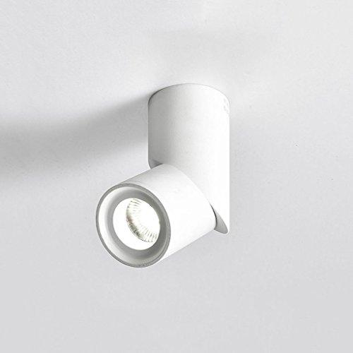 WSXXN LED 10W Nordic Minimalist Full Aluminium Runde einstellbare Winkel Acryl Decke Downlight Gang Korridor Wand Strahler (schwarz, weiß) (Farbe : Weiß)