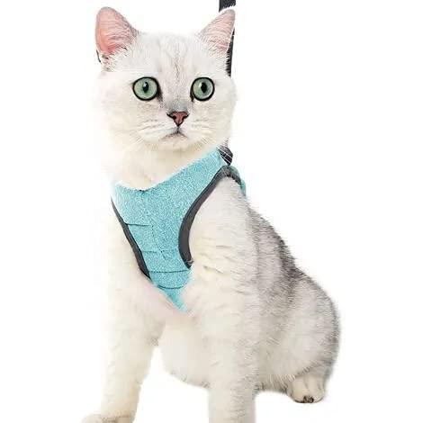 Crea CLEA- Pettorina per gatti ultra leggera e confortevole,con guinzaglio. Sacca Crea inclusa e un coloratissimo gioco in omaggio! (M, Verde)