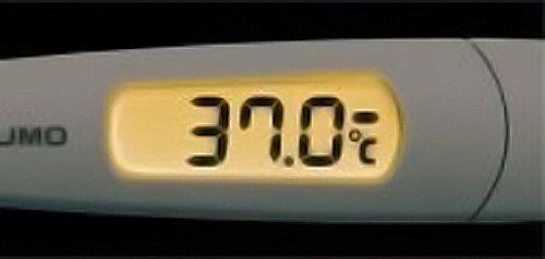 テルモ電子体温計【スピード検温式平均20秒】ET-C231P