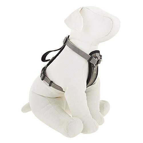 KONG Comfort Harness Padded Gray Small
