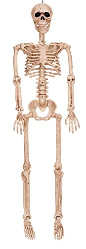 Crazy Bonez Posable Skeleton Decoration, 36""