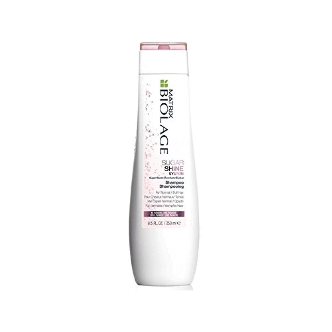 キャラクター短命火薬Matrix Biolage Sugarshine Shampoo (250ml) (Pack of 6) - マトリックスバイオレイジのシャンプー(250ミリリットル) x6 [並行輸入品]