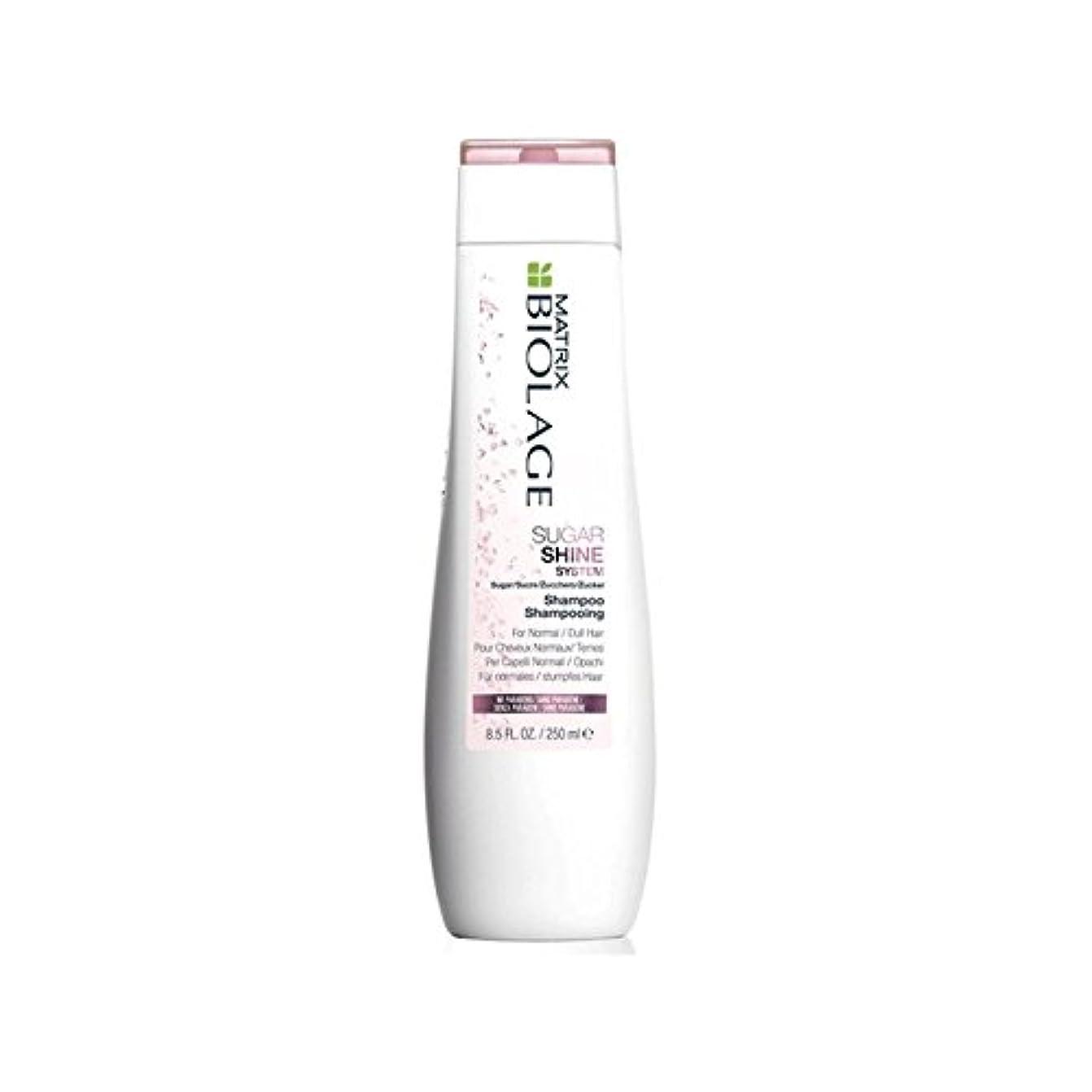 会話型洗剤倒産マトリックスバイオレイジのシャンプー(250ミリリットル) x2 - Matrix Biolage Sugarshine Shampoo (250ml) (Pack of 2) [並行輸入品]