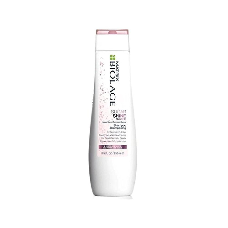 起きてはしご従事するマトリックスバイオレイジのシャンプー(250ミリリットル) x4 - Matrix Biolage Sugarshine Shampoo (250ml) (Pack of 4) [並行輸入品]