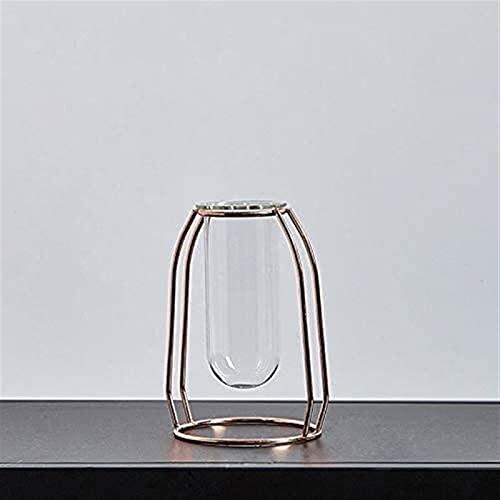 Vase Dekoration Blume Dekoration Home Terrarium Glasbehälter Glasvase Transparente Blumen Wohnzimmer Dekoration JXLBB (Color : B)