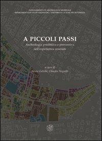 A piccoli passi. Archeologia predittiva e preventiva nell'esperienza cesenate. Atti del Convegno (Cesena, 28 novembre 2008)