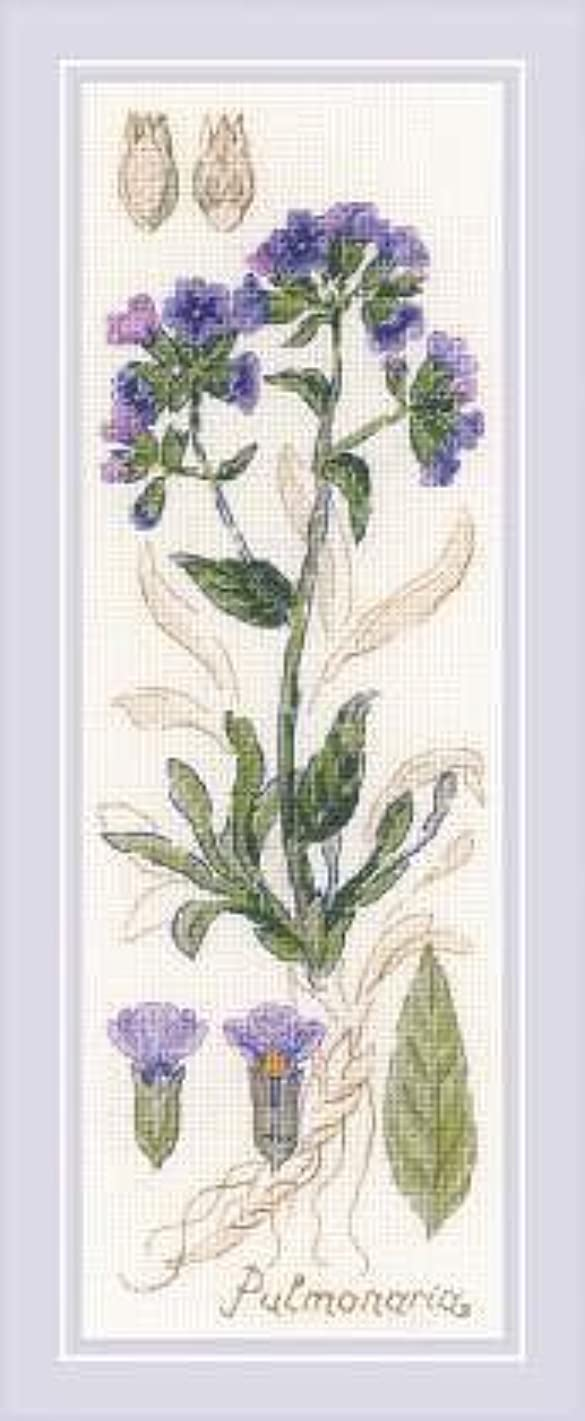 RIOLIS 1797 - Pulmonaria - Counted Cross Stitch Kit 3?