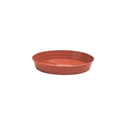 Piatto classico rotondo, Ø 26 cm, colore: terracotta