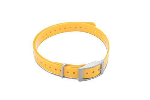 Garmin Square Buckle Collar Strap Yellow, 010-11870-04 (Yellow)