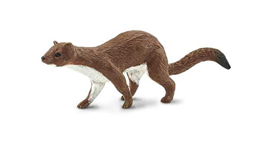 Safari Ltd Wild Safari North American Wildlife Collection Figur, braunes Wiesel, 8,9 x 3,8 cm, ungiftig und BPA-frei, ab 3 Jahren