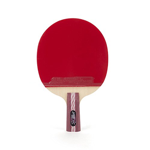 DHS Ping Pong Paddle 4006, Table Tennis Racket - Penhold with LANDSON Rubber Protection