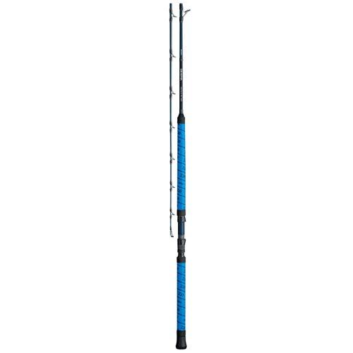 Daiwa, Proteus WN 1 Piece Casting Rod, 7