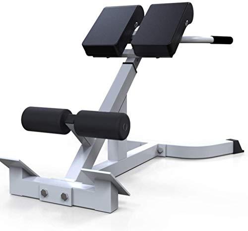 Bench Roman Chair Back Hyperextension/ Hyper Back Extension