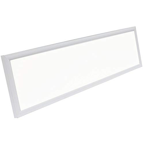 """G2 LED Panel Recessed in Ceiling Tile Light or Ceiling or Thin Flush Mount Lighting in Laundry Garage Workshop Office   DLC Certified Bright Downlight (12"""" x 48"""")"""