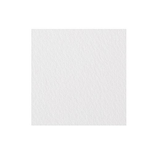 ミューズ ホワイトワトソンロール 特厚口 239g 1130mm (耳付き)×10m