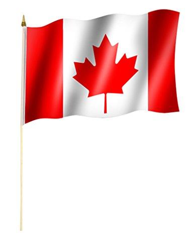 Sportfanshop24 Stockflagge/Stockfahne KANADA/CANADA Flagge/Fahne ca. 30 x 45 cm mit ca. 60cm Stab/Stock