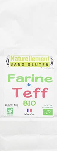 NATURELLEMENT SANS GLUTEN Farine de Teff Bio 400 g - Lot de 3
