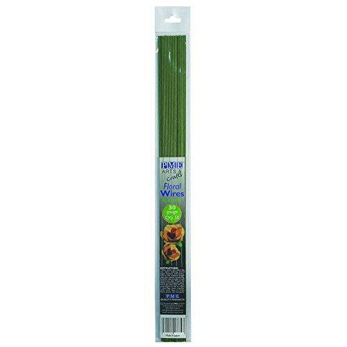 PME FW30 Set de 50 Fils pour Fleurs, Métal, Vert, 0,1 x 0,1 x 36 cm