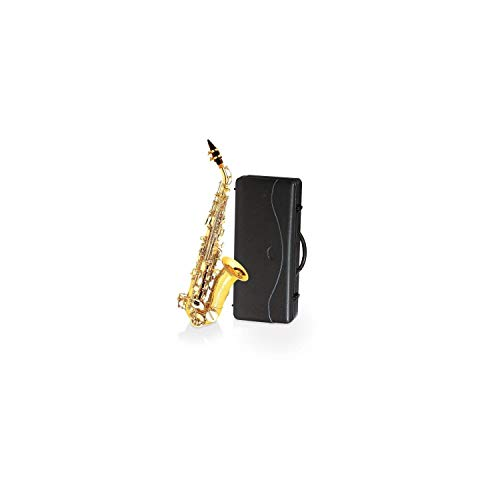 DELSON V-SAXSC - Saxofón soprano, color dorado