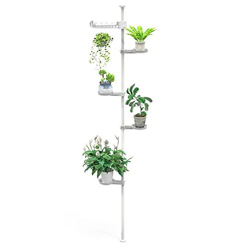 Begleri Soportes para plantas