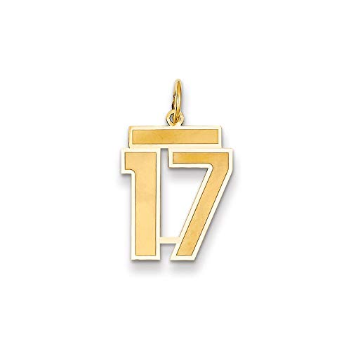 14K Yellow Gold Medium Satin Number 17 Charm Pendant