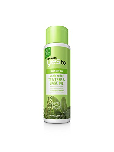 Yes To Naturals Tea Tree & Sage Oil Scalp Relief Shampoo for Dry & Itchy Scalp, white, Carrots, 12 Fl Oz