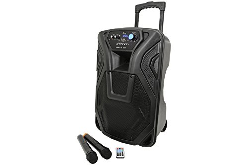 BUSKER-12 | Rechargeable Battery Powered Portable PA with 2 Wireless...