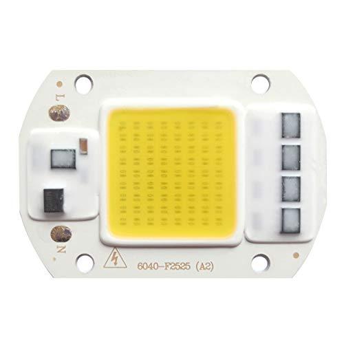 Tesfish LED motore 50W 220V COB chip bianco caldo integrato con ingresso Smart IC driver per proiettore a LED
