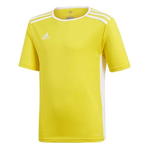 adidas Boys' Entrada 18 Jersey, Yellow/White, Medium