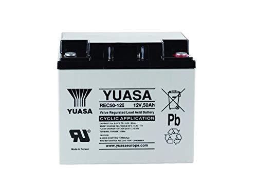 Yuasa - Batería plomo AGM REC50-12 12V 50Ah F-M5