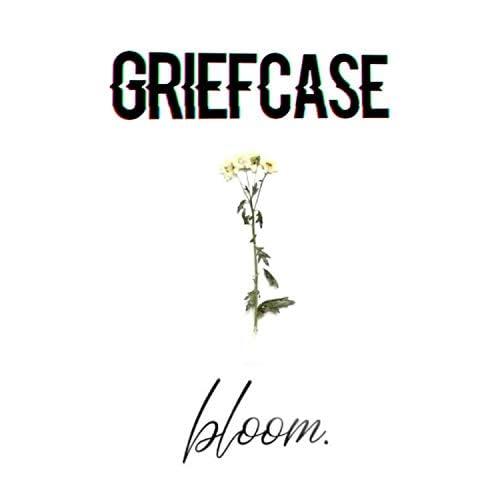Griefcase