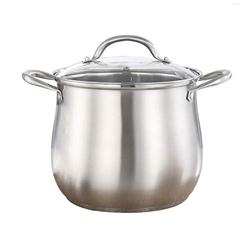 LILICEN Heavy 16 Deep Induction Stock Pot with Glass Lid,Stockpot,with Glass Lid and Polished Mirror Finish, Stainless Steel (Size : 25 * 26cm) (Size : 25 * 26cm)